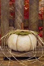 421 - White Pumpkin Pattern