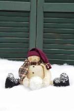483 - Snowball Fun Pattern