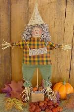 539 - Harvest Scarecrow Pattern