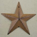 3-D Mustard Tin Star