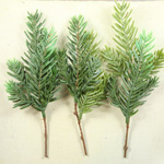 Greenery - Set of 3 Pine Picks