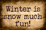 "T45 - ""Winter is snow much fun!"" Sign"