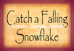 T47 - Catch a Falling Snowflake Signs