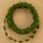 Mini Ming Pine Garland