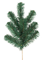 Greenery - Douglas Pine Spray